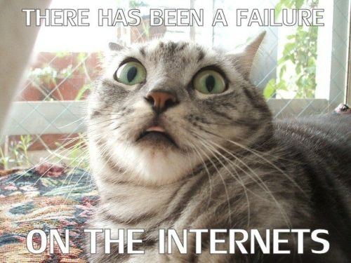 cat-internet-failure